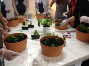 herb course