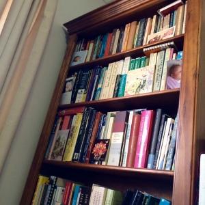 Clinic bookshelf