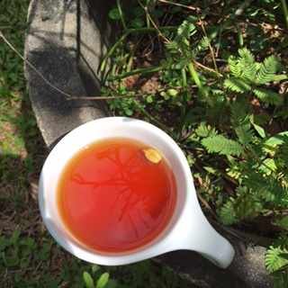 Sri Lanka AHG cardamom tea