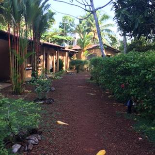Sri Lanka DG treatment rooms
